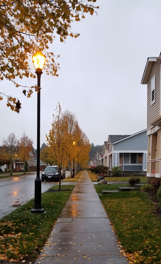 Blog Post Picture 10.22.19 No 2 Neighborhood